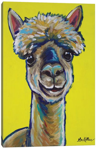 Alpaca - Jose Canvas Art Print