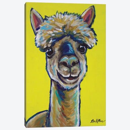 Alpaca - Jose Canvas Print #HHS171} by Hippie Hound Studios Canvas Wall Art