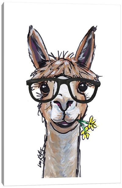 Alpaca - Lycoming Glasses Canvas Art Print