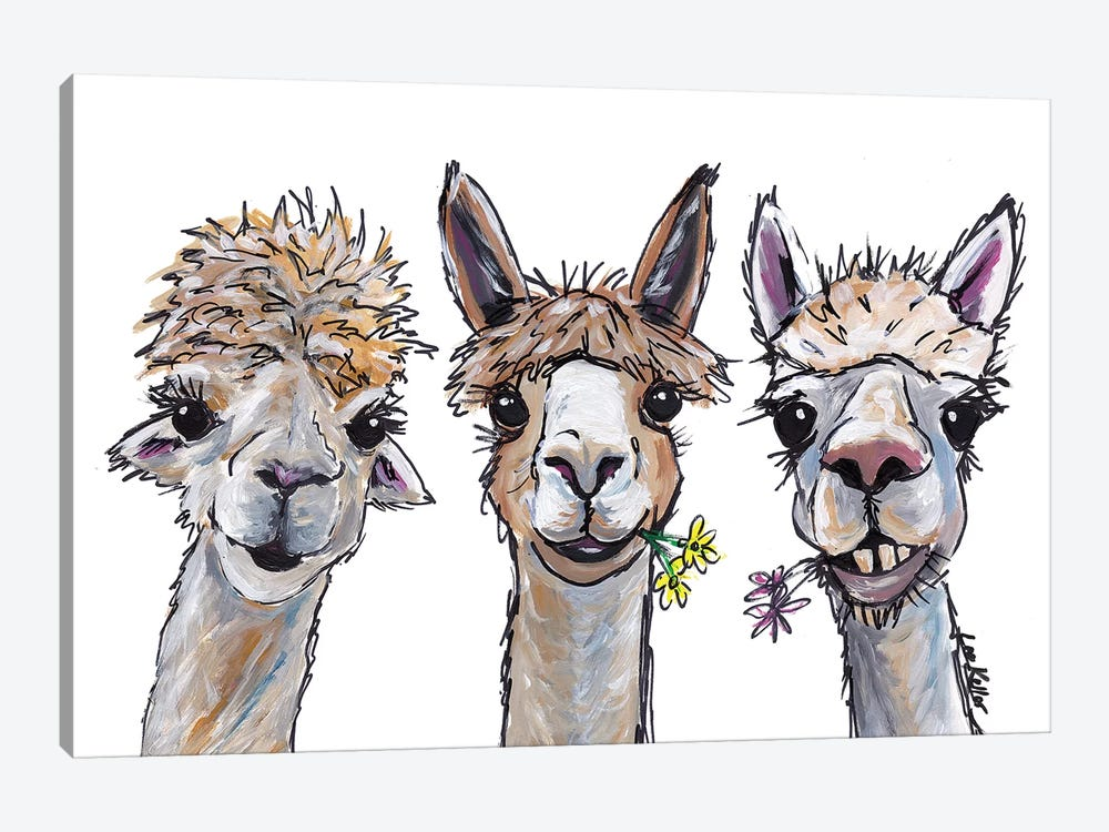 Alpacas Trio II by Hippie Hound Studios 1-piece Canvas Wall Art