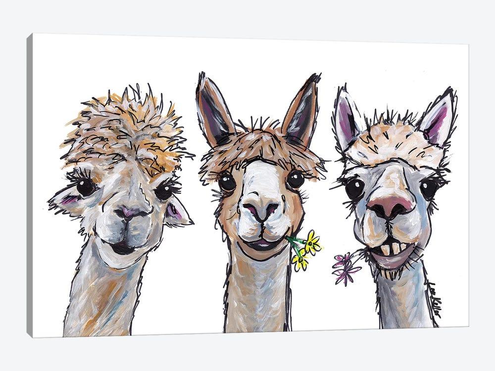 Alpacas Trio II by Hippie Hound Studios 1-piece Canvas Wall Art