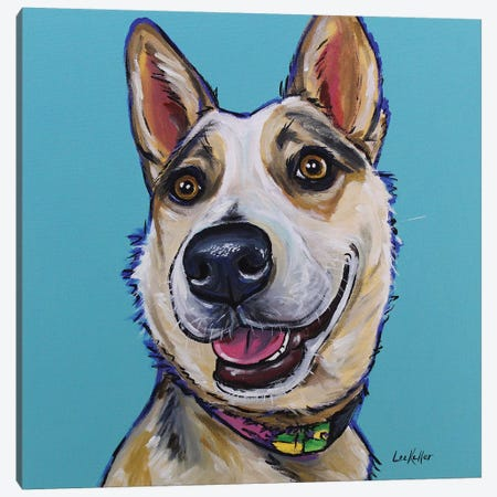 Australian Cattle Dog - Mckinley Canvas Print #HHS174} by Hippie Hound Studios Canvas Print