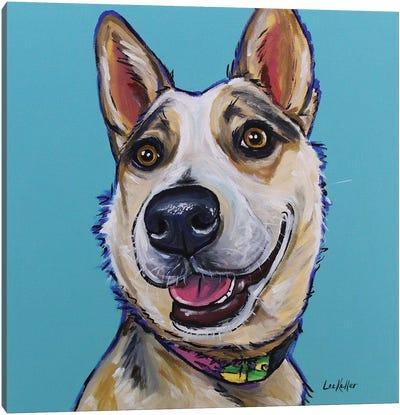 Australian Cattle Dog - Mckinley Canvas Art Print