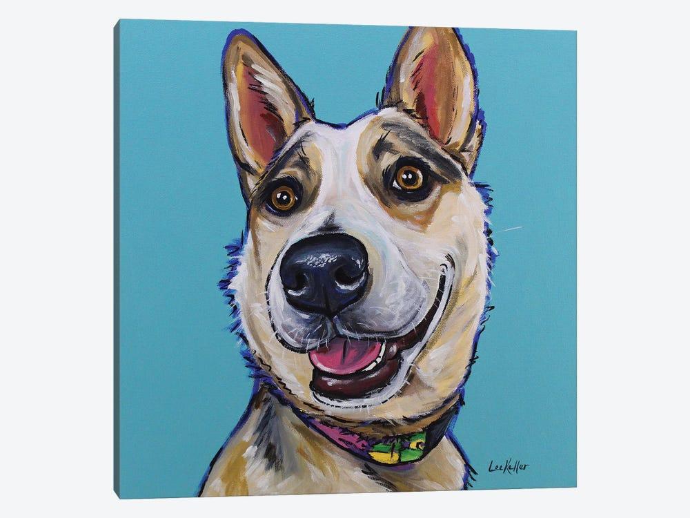 Australian Cattle Dog - Mckinley by Hippie Hound Studios 1-piece Canvas Art Print