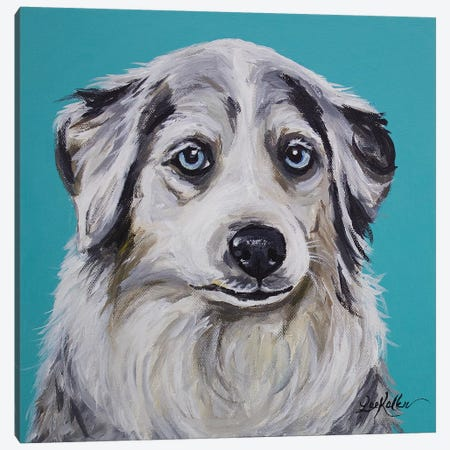Australian Shepherd - Tina Canvas Print #HHS175} by Hippie Hound Studios Canvas Art Print
