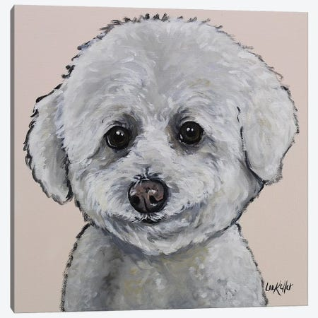 Bichon - Pink Cassie Canvas Print #HHS177} by Hippie Hound Studios Canvas Print