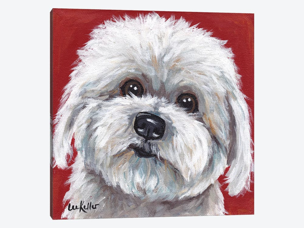 Coton de Tulear by Hippie Hound Studios 1-piece Canvas Wall Art