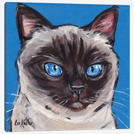 Cat Siamese On Blue Canvas Print #HHS180} by Hippie Hound Studios Canvas Print