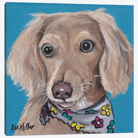 Dachshund With Flower Bandana Canvas Print #HHS18} by Hippie Hound Studios Canvas Art Print