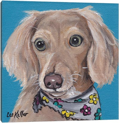 Dachshund With Flower Bandana Canvas Art Print