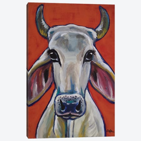 Cow - Zebu Ox Canvas Print #HHS190} by Hippie Hound Studios Canvas Wall Art