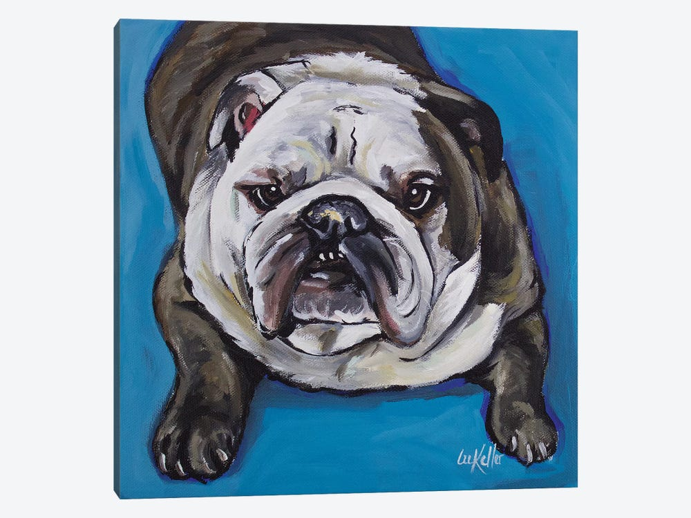 English Bull - Krup by Hippie Hound Studios 1-piece Canvas Print