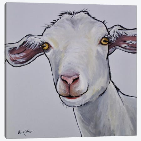 Goat Gray Color Match Canvas Print #HHS196} by Hippie Hound Studios Canvas Art Print