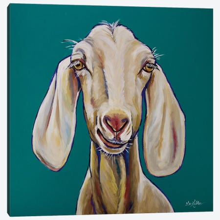 Goat - Margot Canvas Print #HHS197} by Hippie Hound Studios Canvas Print
