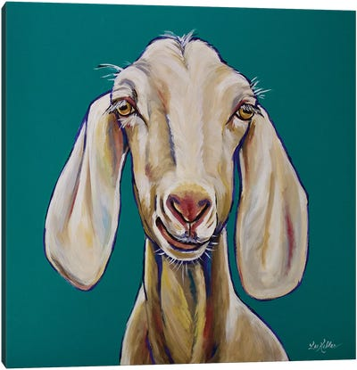 Goat - Margot Canvas Art Print