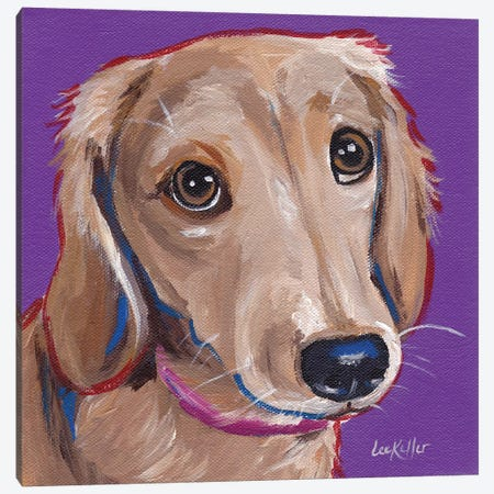 Daschund On Purple Canvas Print #HHS19} by Hippie Hound Studios Canvas Art Print