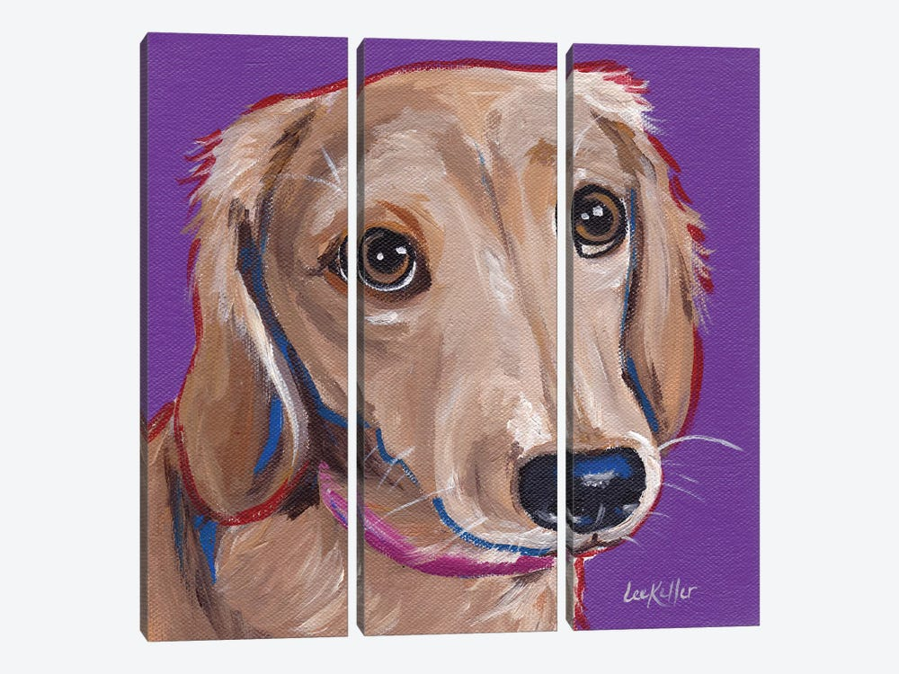 Daschund On Purple by Hippie Hound Studios 3-piece Canvas Wall Art