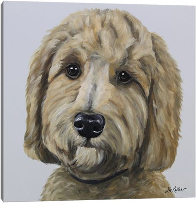 Goldendoodle On Gray Canvas Art Print