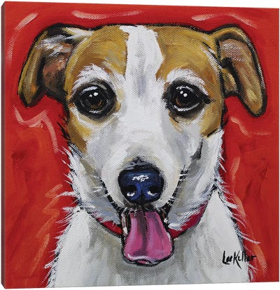 Jack Russell - Ginny Canvas Art Print