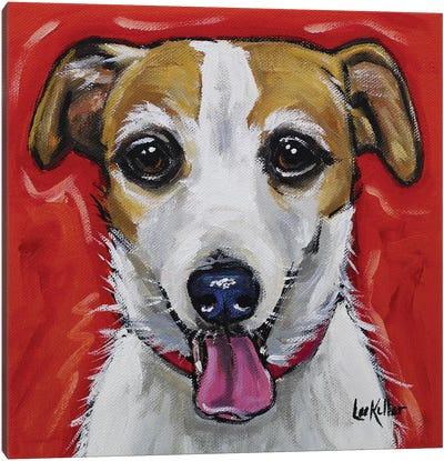 Jack Russell - Ginny Canvas Art Print