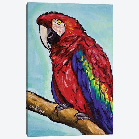 Macaw Canvas Print #HHS205} by Hippie Hound Studios Canvas Art Print