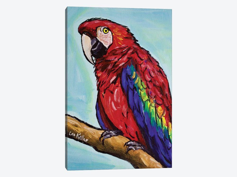 Macaw by Hippie Hound Studios 1-piece Canvas Art Print