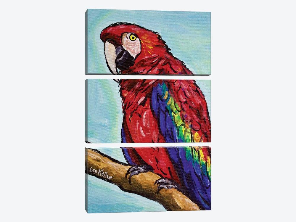 Macaw by Hippie Hound Studios 3-piece Canvas Print