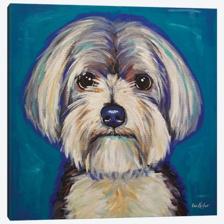Morkie Canvas Print #HHS208} by Hippie Hound Studios Canvas Art