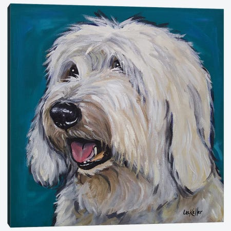 Old English Sheepdog - Rooney Canvas Print #HHS209} by Hippie Hound Studios Canvas Wall Art