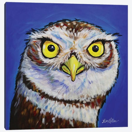 Owl - Midnight Canvas Print #HHS210} by Hippie Hound Studios Canvas Art Print