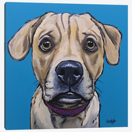Puggle - Camden Canvas Print #HHS216} by Hippie Hound Studios Canvas Artwork