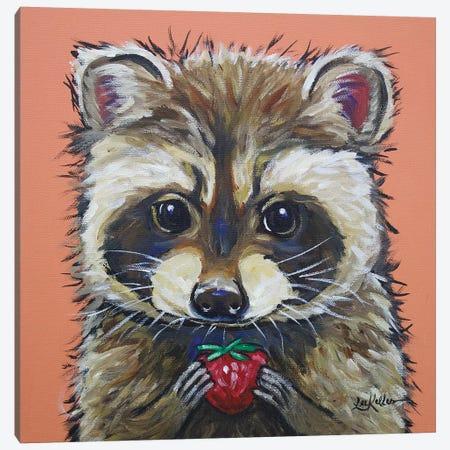 Raccoon - Callie Canvas Print #HHS218} by Hippie Hound Studios Canvas Art Print