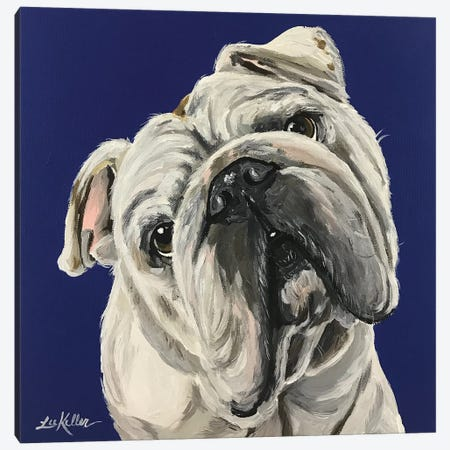 English Bulldog On Blue Canvas Print #HHS21} by Hippie Hound Studios Canvas Art