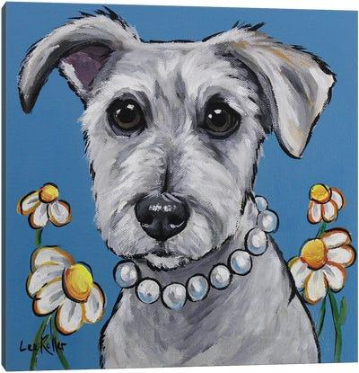 Schnauzer - Daisy Canvas Art Print