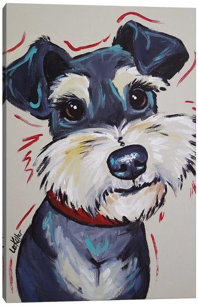 Schnauzer Whimsical - Mr Foozootie Canvas Art Print