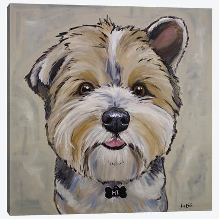 Terrier - Bucky 3-Piece Canvas #HHS227} by Hippie Hound Studios Art Print