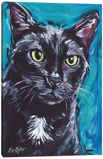Expressive Black Cat Canvas Art Print
