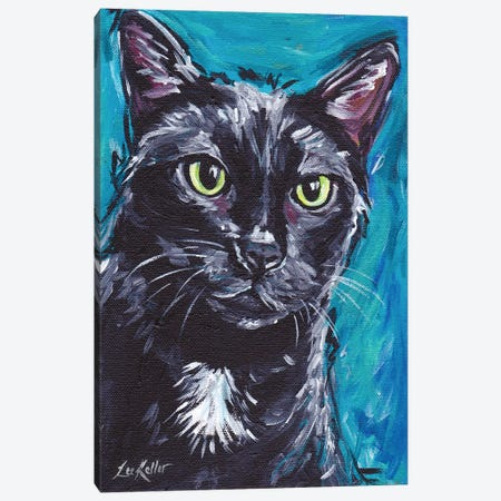 Expressive Black Cat Canvas Print #HHS22} by Hippie Hound Studios Canvas Wall Art