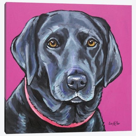 Black Lab On Pink Canvas Print #HHS239} by Hippie Hound Studios Canvas Print