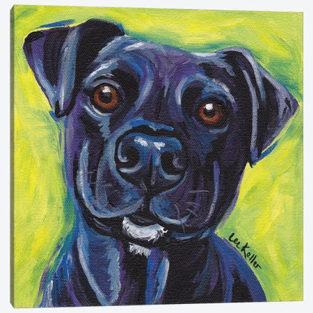 Expressive Black Dog Canvas Print #HHS23} by Hippie Hound Studios Canvas Art