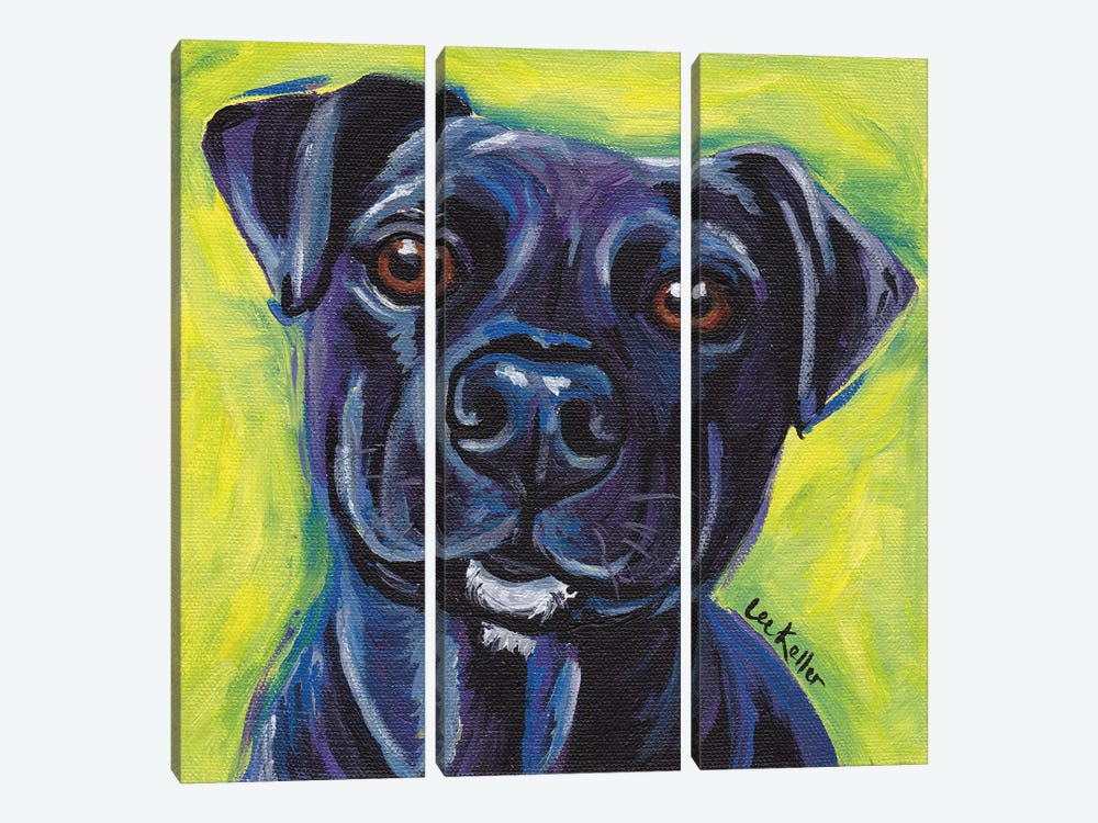 Expressive Black Dog by Hippie Hound Studios 3-piece Canvas Art Print
