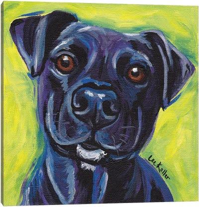 Expressive Black Dog Canvas Art Print