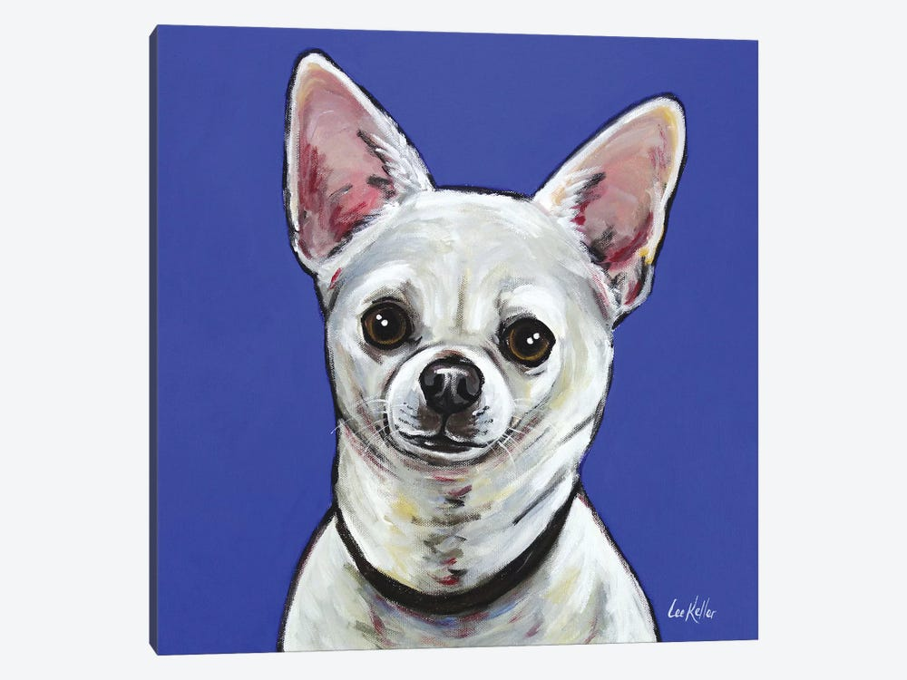Chihuahua - Pepe by Hippie Hound Studios 1-piece Canvas Wall Art