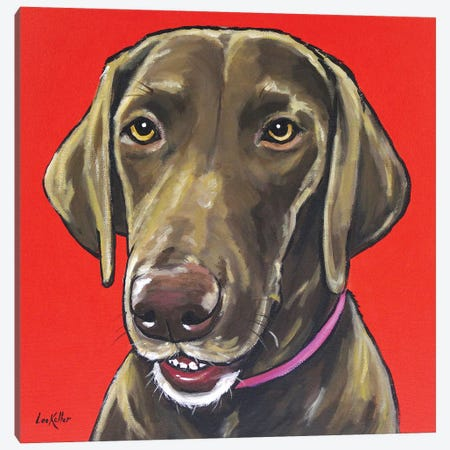 Chocolate Lab On Orange Canvas Print #HHS245} by Hippie Hound Studios Canvas Print