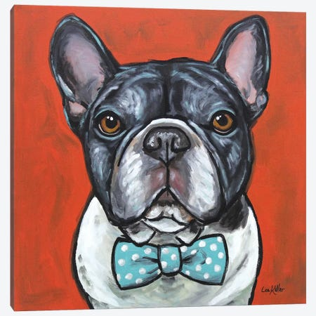 Frenchie - Louie Canvas Print #HHS249} by Hippie Hound Studios Canvas Wall Art