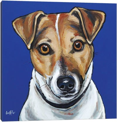 Jack Russell - Buster Canvas Art Print