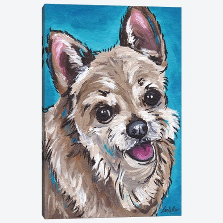 Expressive Chihuahua On Teal Canvas Print #HHS25} by Hippie Hound Studios Art Print