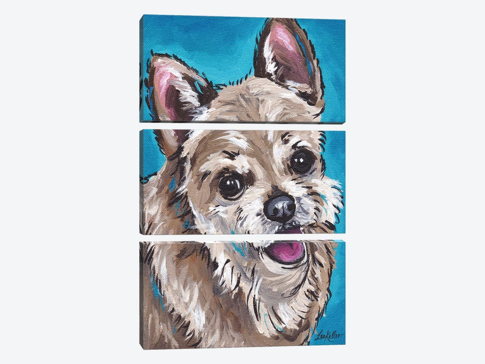 Expressive Chihuahua On Teal by Hippie Hound Studios 3-piece Canvas Art Print