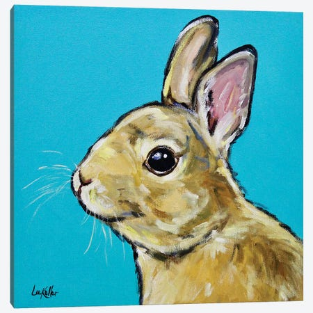 Rabbit - Napoleon Canvas Print #HHS262} by Hippie Hound Studios Canvas Art