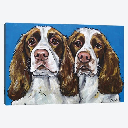 Springer Spaniels Canvas Print #HHS263} by Hippie Hound Studios Canvas Artwork